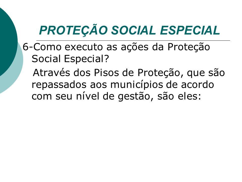 PROTEÇÃO SOCIAL ESPECIAL 6-Como executo as ações da Proteção Social Especial.
