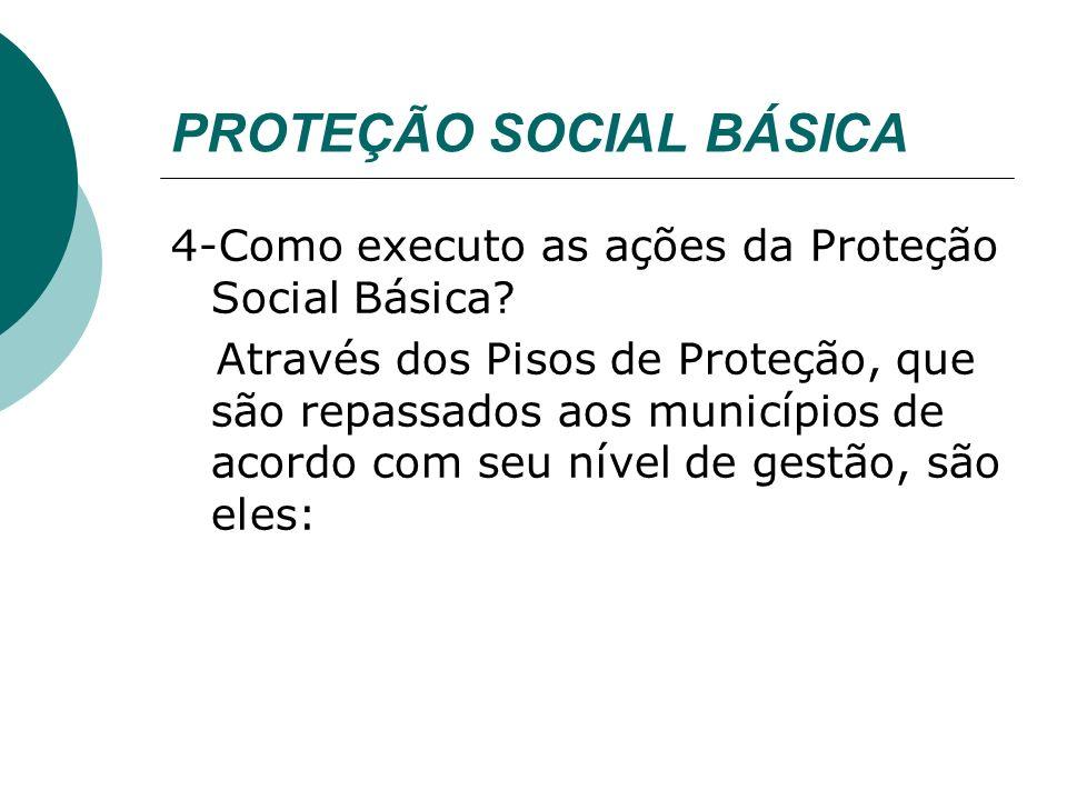 PROTEÇÃO SOCIAL BÁSICA Execução Piso Básico Fixo (Paif): Regulamentado pela Portaria nº.