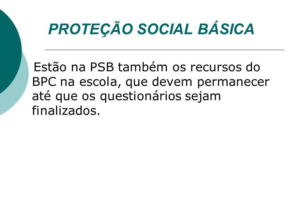 PROTEÇÃO SOCIAL BÁSICA Estão na PSB também os recursos do BPC na escola, que devem permanecer até que os questionários sejam finalizados.