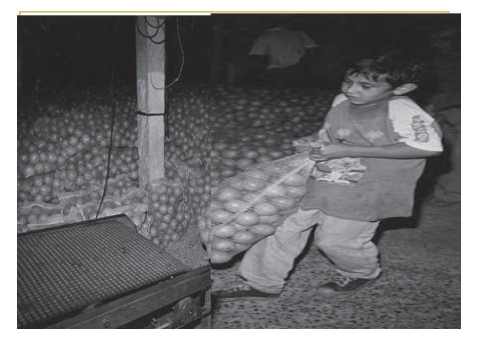 Busca ativa de situações de trabalho infantil: - O processo de busca ativa de situações de trabalho infantil no território deve estar articulado, no mínimo, com os seguintes atores: Vigilância Social, Superintendências Regionais do Trabalho, Ministério Público do Trabalho, Conselho Tutelar, Serviço Especializado em Abordagem Social, PETI, Programa Bolsa Família, CRAS/PAIF, CREAS/PAEFI, Educação, Saúde e canais de denúncia para a violação de direitos de criança/adolescente, quando houver; - A rede de educação e de saúde deve ser priorizada enquanto estratégias de busca ativa do trabalho infantil haja vista sua capilaridade e abrangência.