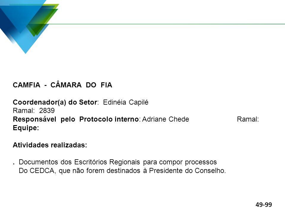 CAMFIA - CÂMARA DO FIA Coordenador(a) do Setor: Edinéia Capilé Ramal: 2839 Responsável pelo Protocolo interno: Adriane Chede Ramal: Equipe: Atividades