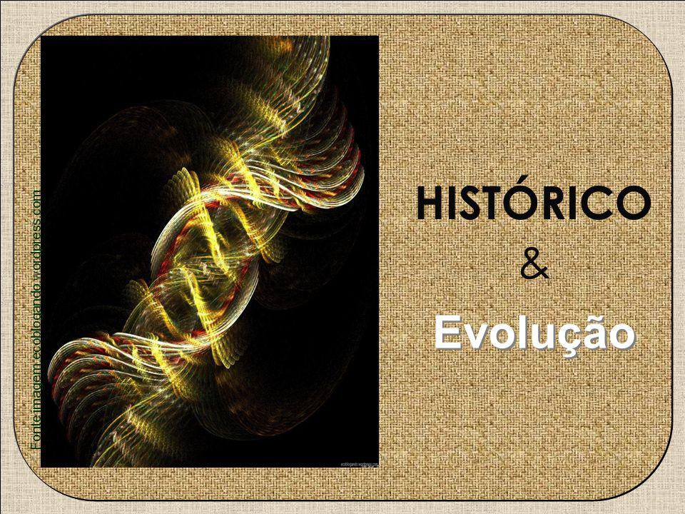& HISTÓRICO Evolução Fonte imagem:ecoblogando.wordpress.com