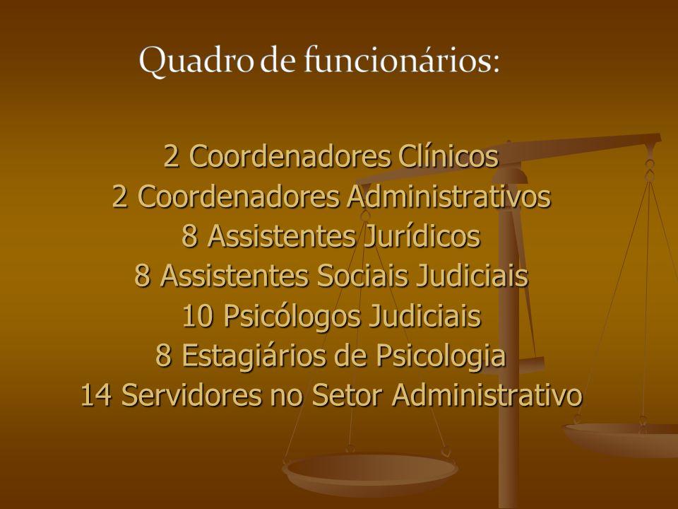 2 Coordenadores Clínicos 2 Coordenadores Administrativos 8 Assistentes Jurídicos 8 Assistentes Sociais Judiciais 10 Psicólogos Judiciais 8 Estagiários