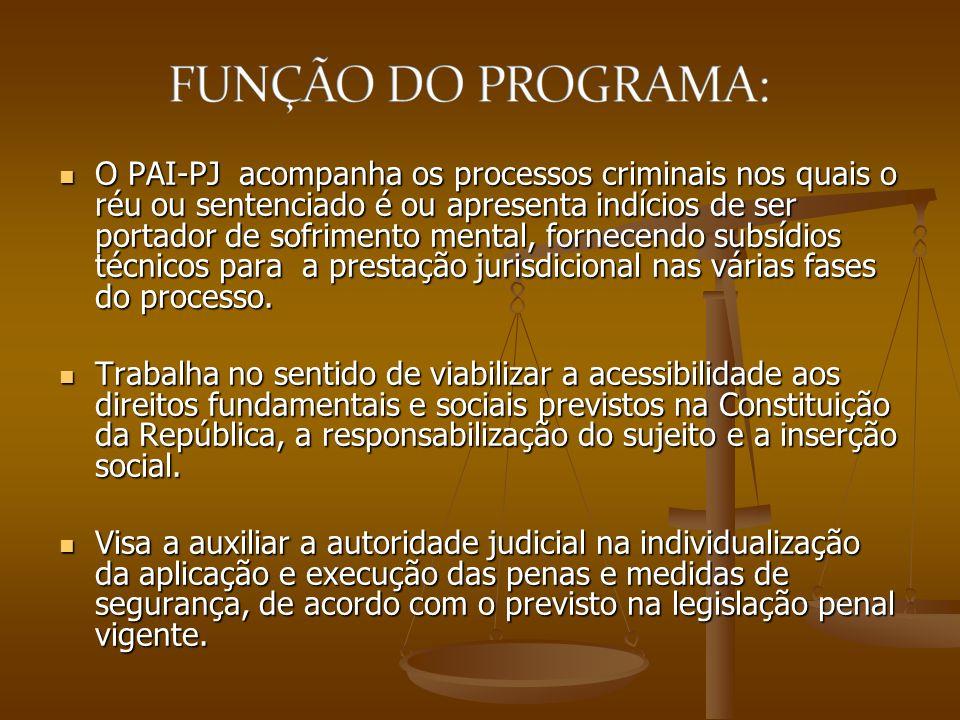 O PAI-PJ acompanha os processos criminais nos quais o réu ou sentenciado é ou apresenta indícios de ser portador de sofrimento mental, fornecendo subs