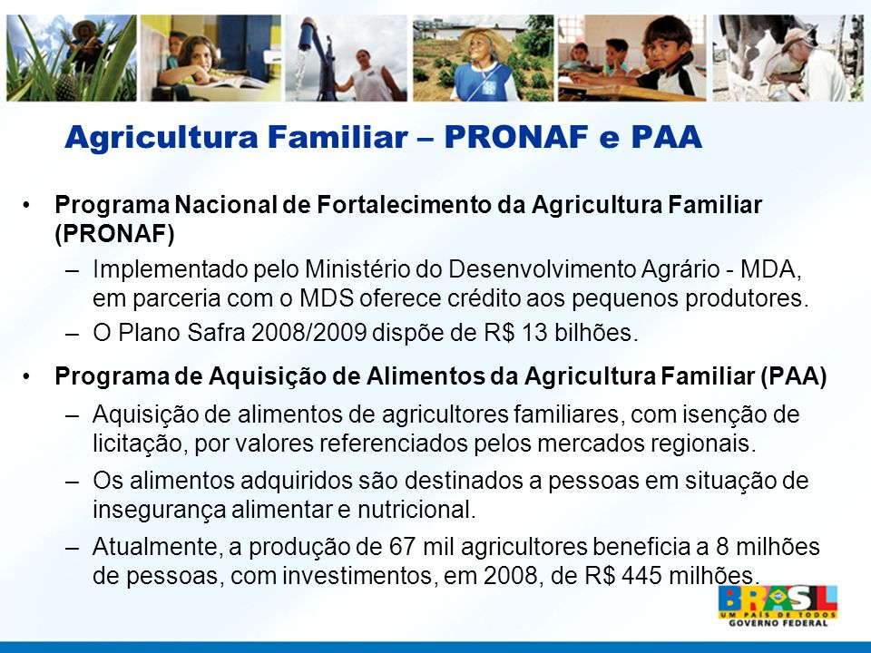 Agricultura Familiar – PRONAF e PAA Programa Nacional de Fortalecimento da Agricultura Familiar (PRONAF) –Implementado pelo Ministério do Desenvolvime