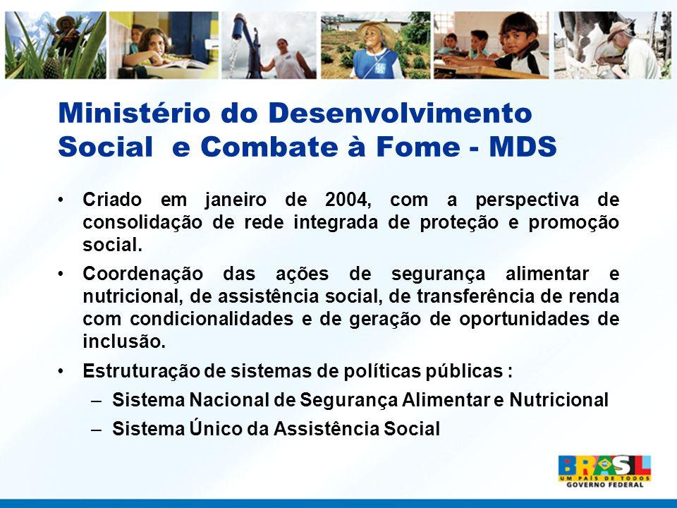Ministério do Desenvolvimento Social e Combate à Fome - MDS Criado em janeiro de 2004, com a perspectiva de consolidação de rede integrada de proteção
