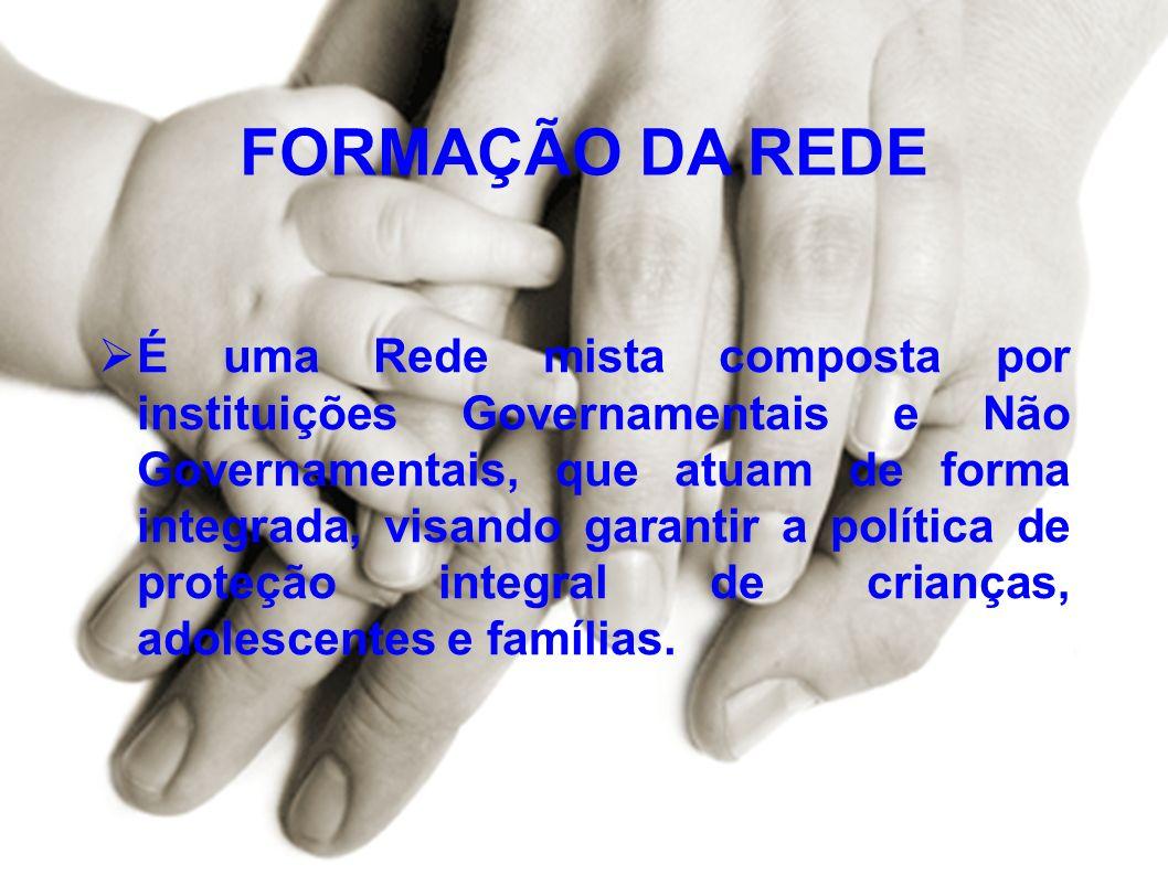 FORMAÇÃO DA REDE É uma Rede mista composta por instituições Governamentais e Não Governamentais, que atuam de forma integrada, visando garantir a polí