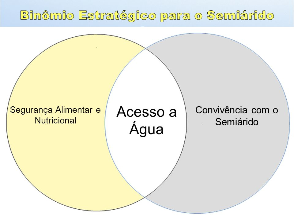 Tornar efetiva a intersetorialidade: MDA (ATER), MMA (Mudanças Climáticas), MS (agentes comunitários de saúde), MEC (cisternas nas escolas e PNAE) e PPA (segunda água).