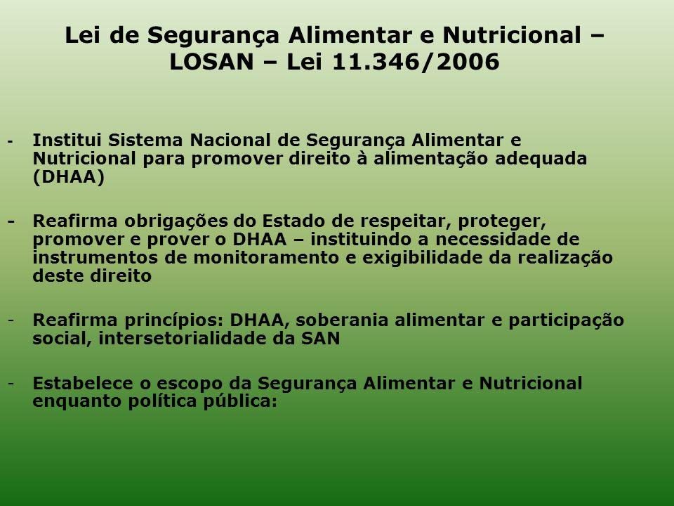 - Institui Sistema Nacional de Segurança Alimentar e Nutricional para promover direito à alimentação adequada (DHAA) -Reafirma obrigações do Estado de