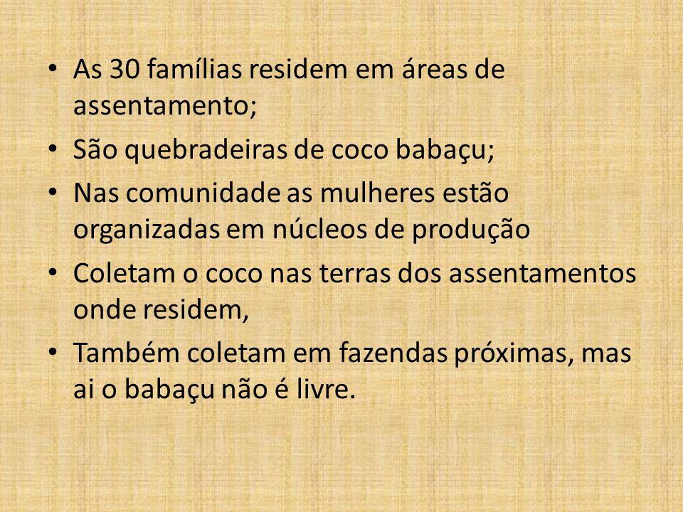 As 30 famílias residem em áreas de assentamento; São quebradeiras de coco babaçu; Nas comunidade as mulheres estão organizadas em núcleos de produção