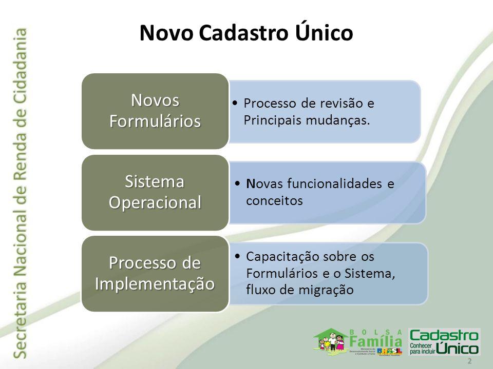 Processo de revisão e Principais mudanças. Novos Formulários Novas funcionalidades e conceitos Sistema Operacional Capacitação sobre os Formulários e
