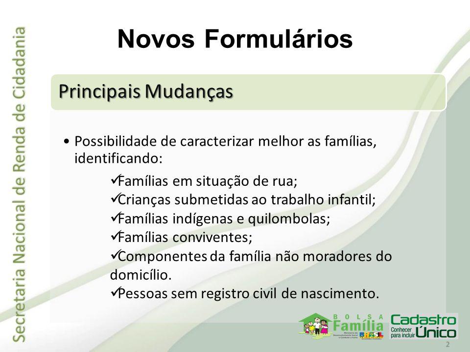 Principais Mudanças Possibilidade de caracterizar melhor as famílias, identificando: Novos Formulários Famílias em situação de rua; Crianças submetida