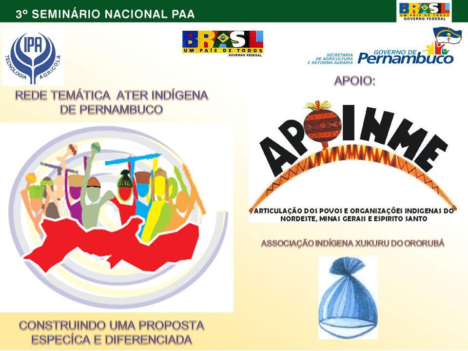 HISTÓRICO 1.RECONQUISTA DO TERRITÓRIO – 2003 (95%) 2.PAA MUNICIPAL – 2007/2008 3.PROJETO CULTIVANDO SABERES – 2008 4.REDE TEMÁTICA DE ATER INDÍGENA 5.SEMINARIO 6.PAA CONAB – 2009/2010 7.PAA – COMPRA COM DOAÇÃO - 2010 8.PAA – LEITE - 2010