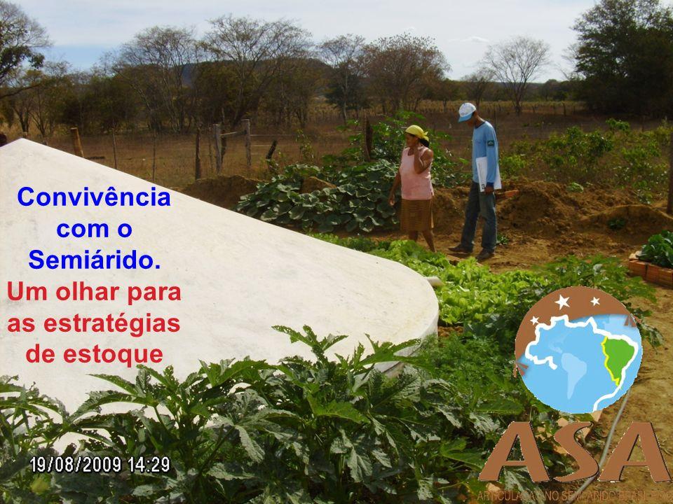 De acordo com censo do IBGE, das mais de 4 milhões de famílias que vivem no meio rural brasileiro, 50% estão no Nordeste, maior parte no Semiárido.