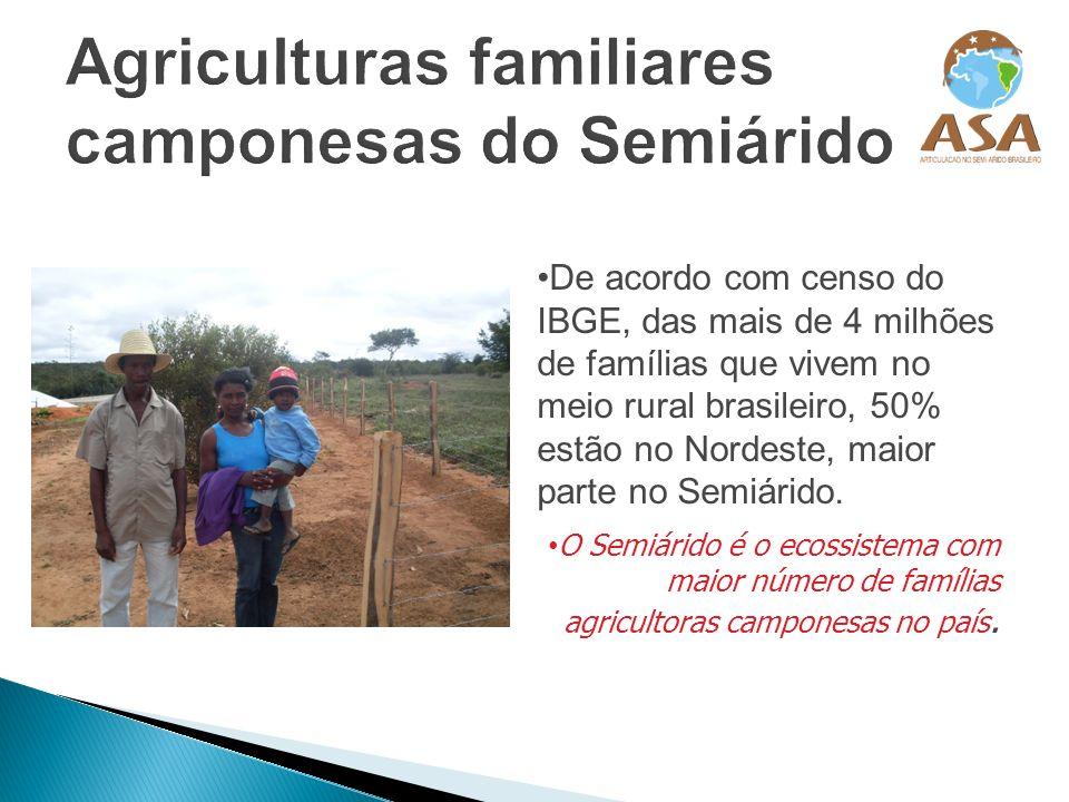 De acordo com censo do IBGE, das mais de 4 milhões de famílias que vivem no meio rural brasileiro, 50% estão no Nordeste, maior parte no Semiárido. O