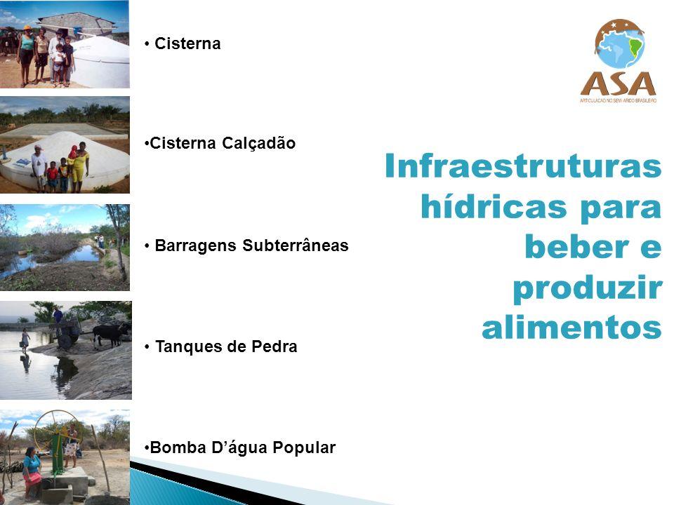 Cisterna Cisterna Calçadão Barragens Subterrâneas Tanques de Pedra Bomba Dágua Popular Infraestruturas hídricas para beber e produzir alimentos