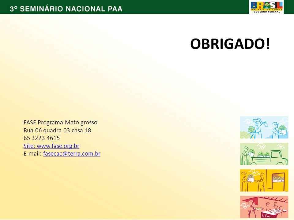 FASE Programa Mato grosso Rua 06 quadra 03 casa 18 65 3223 4615 Site: www.fase.org.br E-mail: fasecac@terra.com.brfasecac@terra.com.br OBRIGADO!