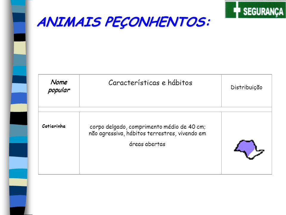 Nome popular Características e hábitos Distribuição Cotiarinha ANIMAIS PEÇONHENTOS: corpo delgado, comprimento médio de 40 cm; não agressiva, hábitos terrestres, vivendo em áreas abertas