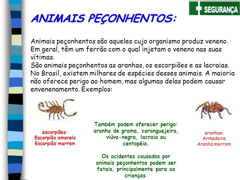 Animais peçonhentos são aqueles cujo organismo produz veneno.