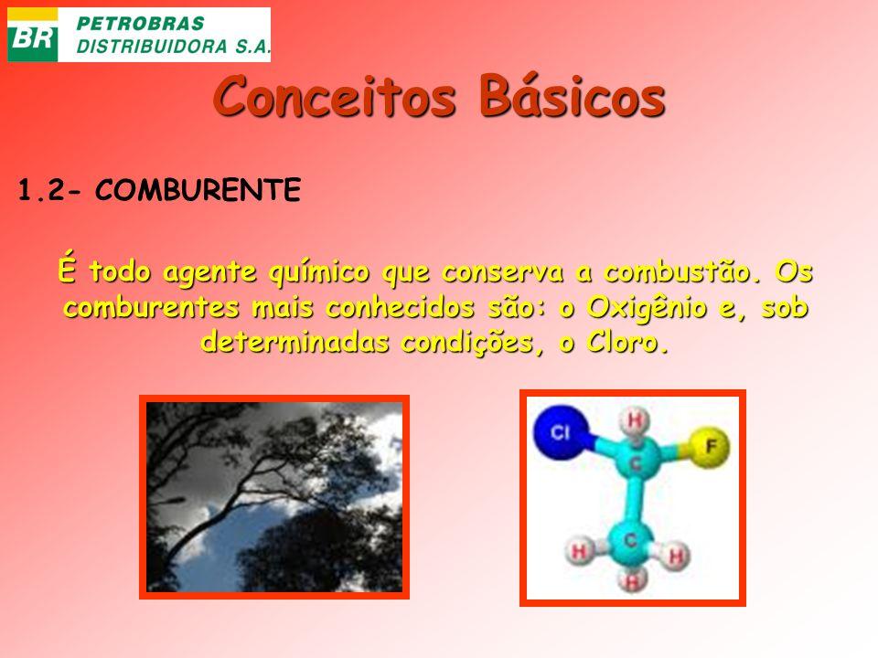Conceitos Básicos 1.2- COMBURENTE É todo agente químico que conserva a combustão. Os comburentes mais conhecidos são: o Oxigênio e, sob determinadas c