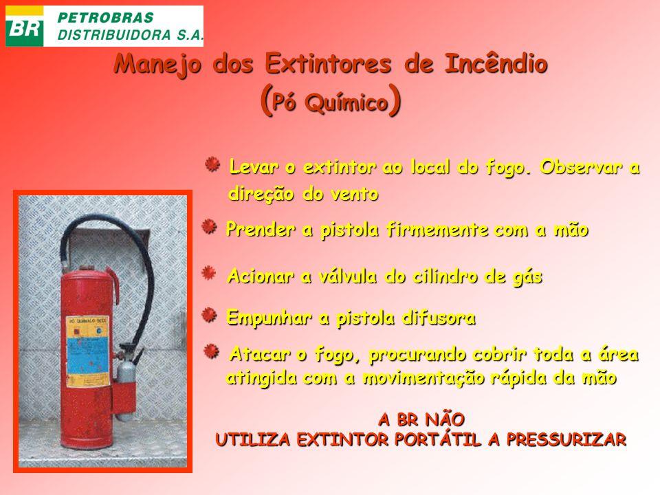 Manejo dos Extintores de Incêndio ( Pó Químico ) Levar o extintor ao local do fogo. Observar a Levar o extintor ao local do fogo. Observar a direção d