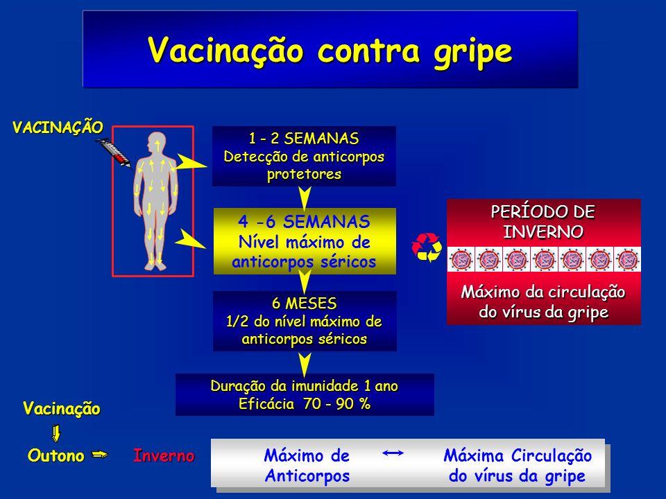 VACINAÇÃO 1 - 2 SEMANAS Detecção de anticorpos protetores 4 -6 SEMANAS Nível máximo de anticorpos séricos PERÍODO DE INVERNO Máximo da circulação do v