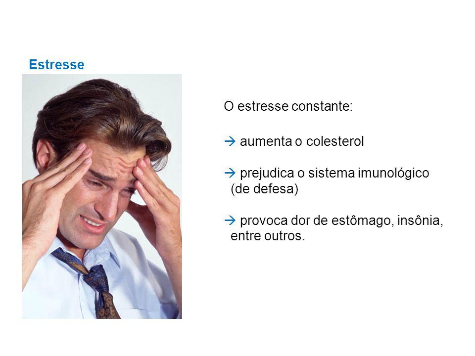 Estresse O estresse constante: aumenta o colesterol prejudica o sistema imunológico (de defesa) provoca dor de estômago, insônia, entre outros.