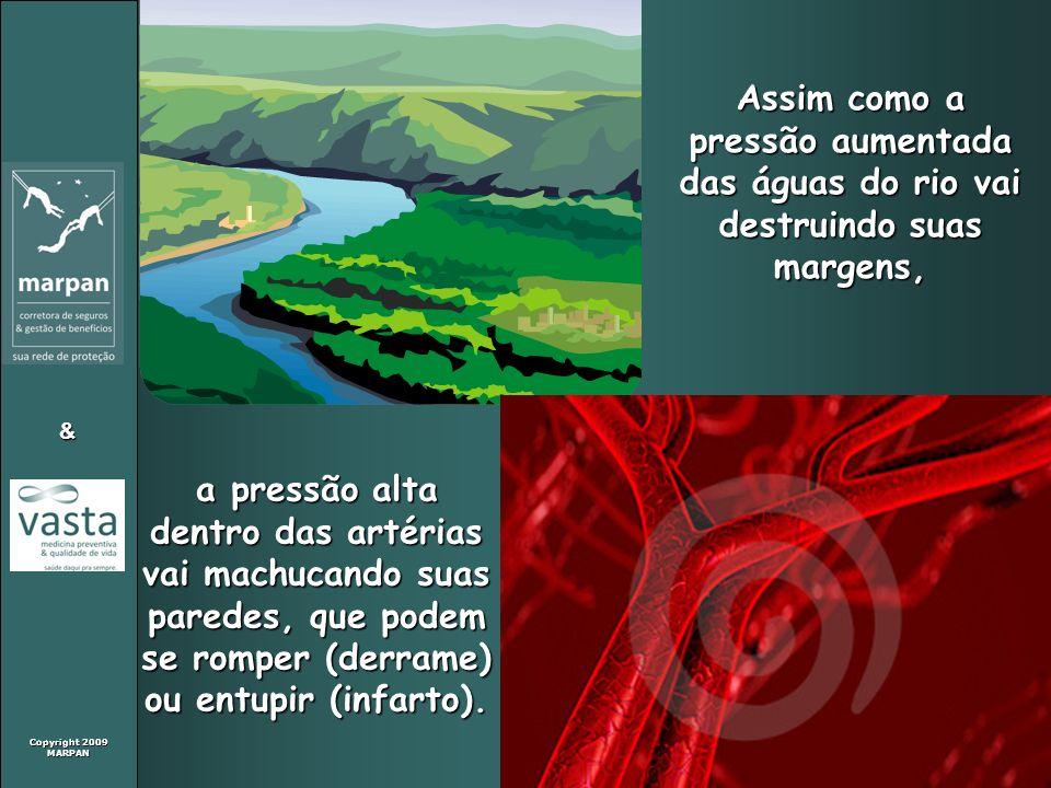 Copyright 2009 MARPAN & Assim como a pressão aumentada das águas do rio vai destruindo suas margens, a pressão alta dentro das artérias vai machucando