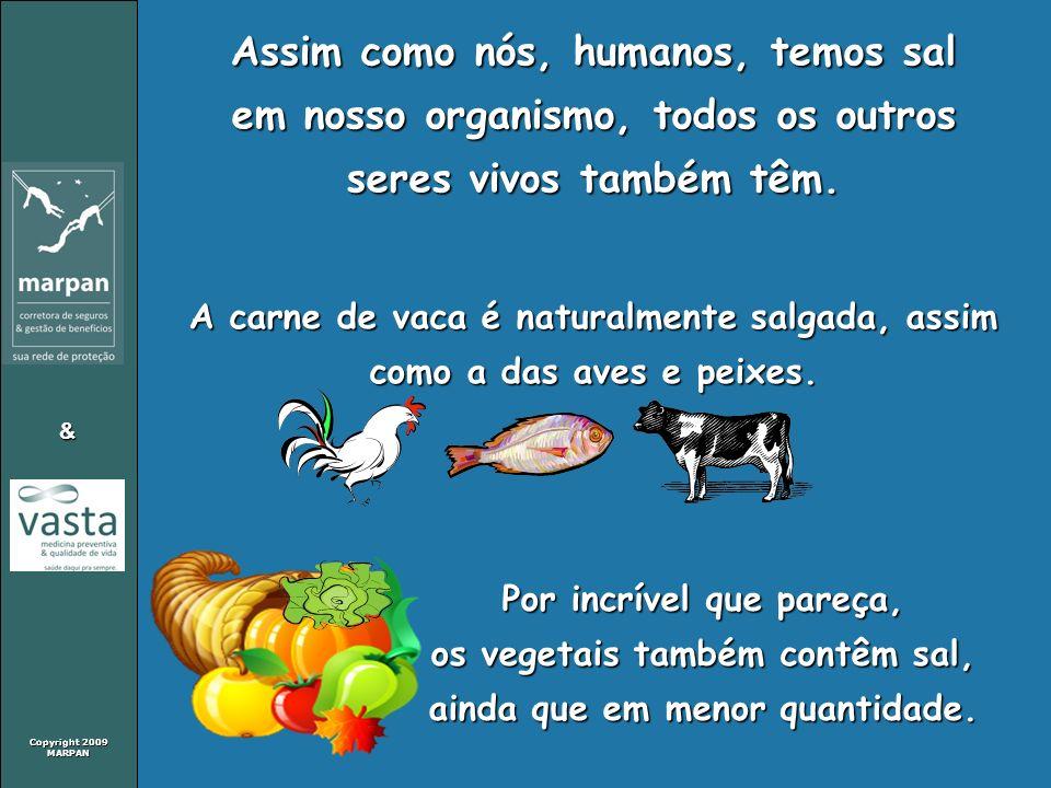 Copyright 2009 MARPAN & Assim como nós, humanos, temos sal em nosso organismo, todos os outros seres vivos também têm. A carne de vaca é naturalmente