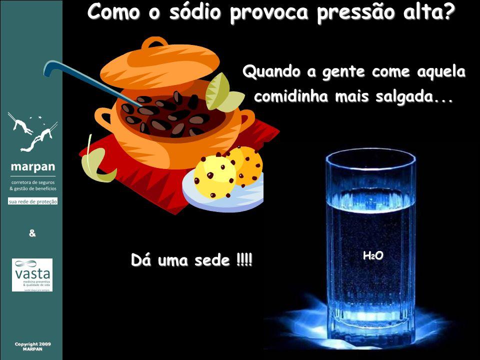 Copyright 2009 MARPAN & MARPAN & Como o sódio provoca pressão alta? Quando a gente come aquela comidinha mais salgada... Dá uma sede !!!! H2OH2OH2OH2O