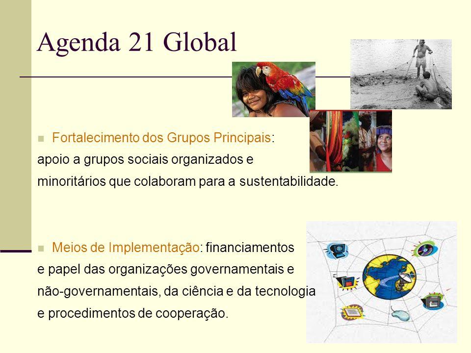 Agenda 21 Global Fortalecimento dos Grupos Principais: apoio a grupos sociais organizados e minoritários que colaboram para a sustentabilidade. Meios