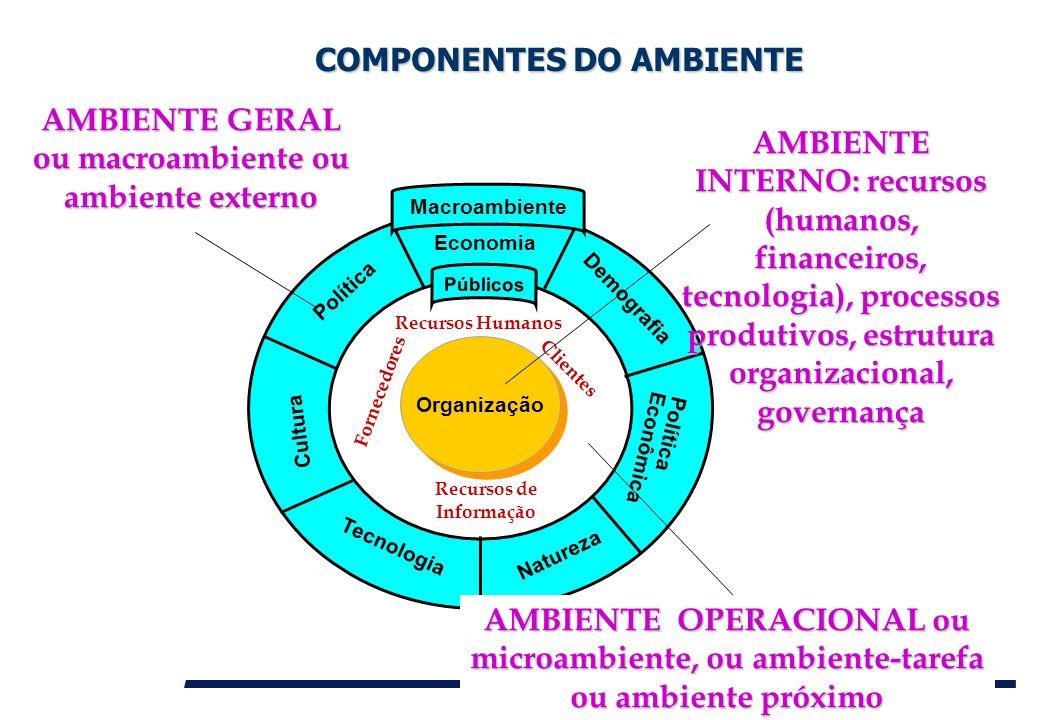 Organização Política Economia Demografia Tecnologia Natureza Cultura Política Econômica Públicos Macroambiente COMPONENTES DO AMBIENTE COMPONENTES DO