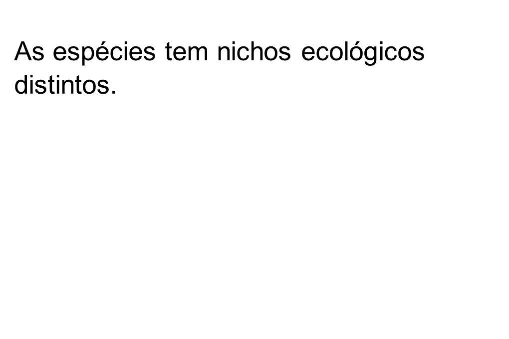 As espécies tem nichos ecológicos distintos.