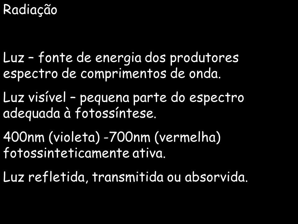 Radiação Luz – fonte de energia dos produtores espectro de comprimentos de onda. Luz visível – pequena parte do espectro adequada à fotossíntese. 400n