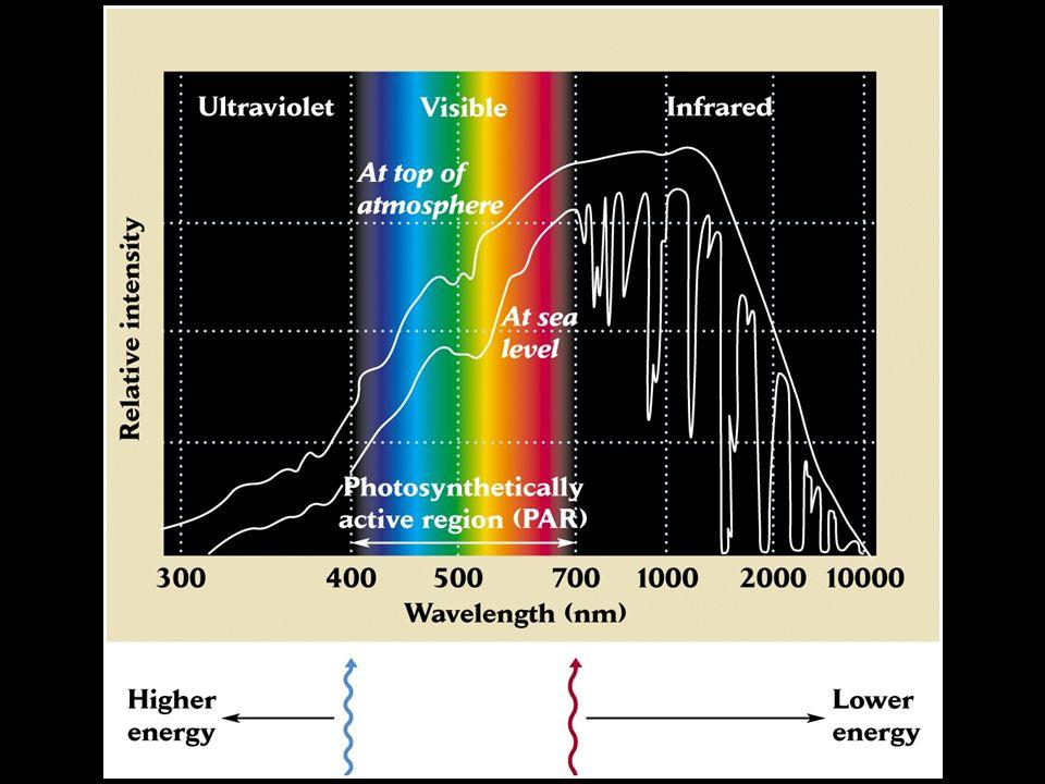 Radiação varia no tempo e nos espaço.Variações diárias e sazonais.