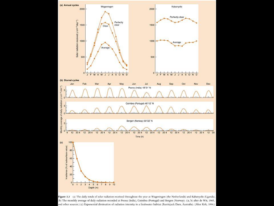 A concentração de um molar cria um potencial osmótico de -21 atm, assim, o potencial osmótico da células dos pelos radiculares de uma planta com ponto de murchamento de -15 atm é equivalente ao potencial osmótico de uma solução de cerca de 0,7 molar.