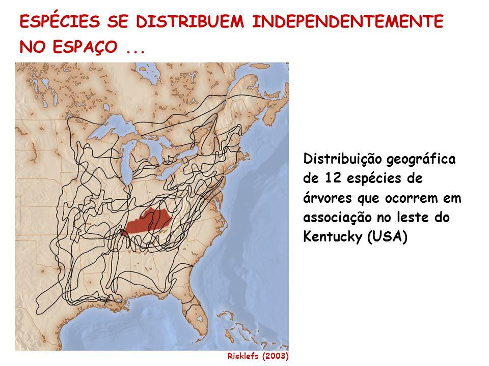 ESPÉCIES SE DISTRIBUEM INDEPENDENTEMENTE NO ESPAÇO... Distribuição geográfica de 12 espécies de árvores que ocorrem em associação no leste do Kentucky
