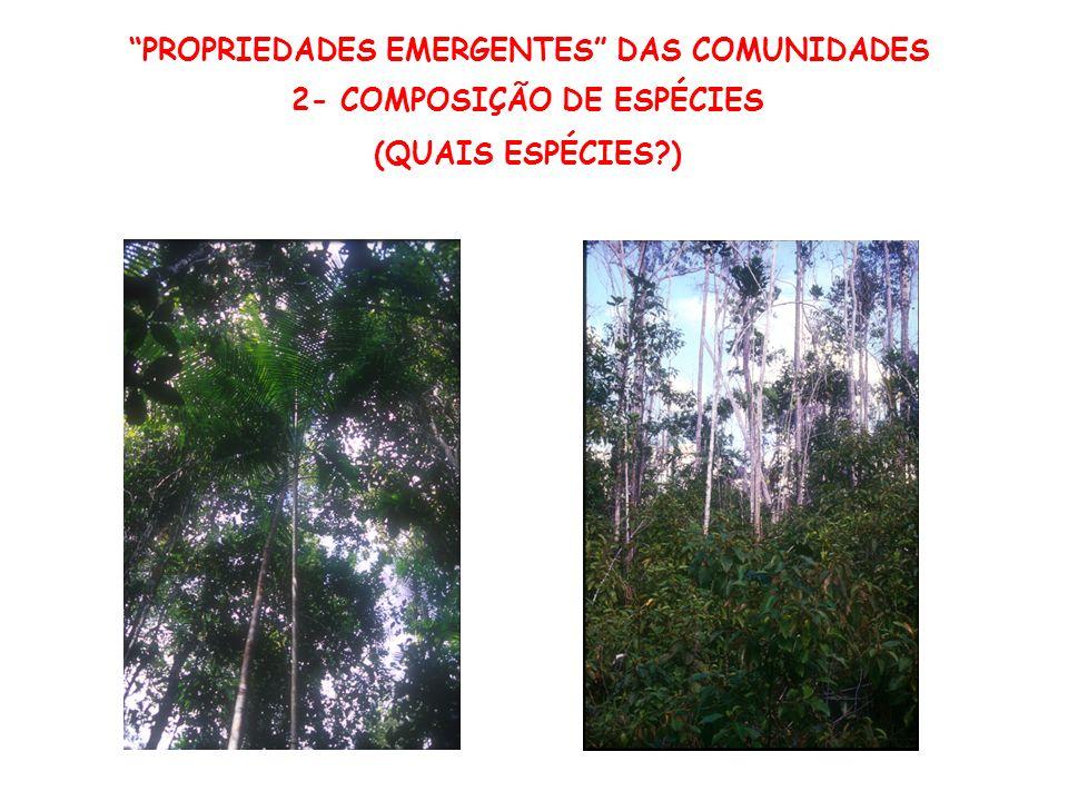PROPRIEDADES EMERGENTES DAS COMUNIDADES 2- COMPOSIÇÃO DE ESPÉCIES (QUAIS ESPÉCIES?)