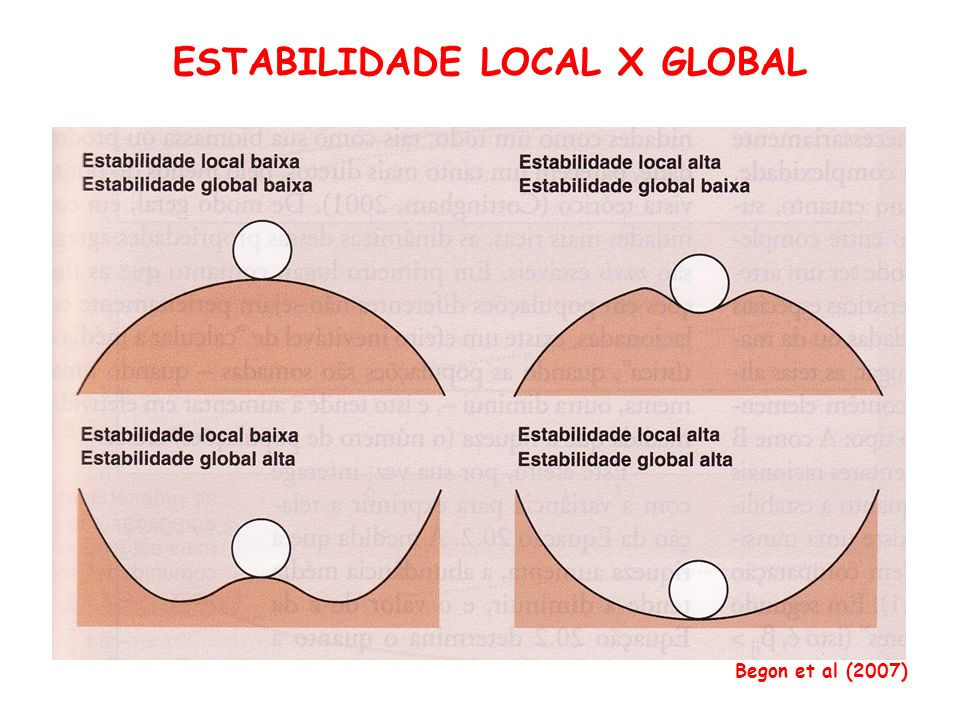 ESTABILIDADE LOCAL X GLOBAL Begon et al (2007)