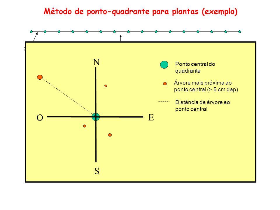 30 m 100 m N O E S Árvore mais próxima ao ponto central (> 5 cm dap) Ponto central do quadrante Distância da árvore ao ponto central Método de ponto-q
