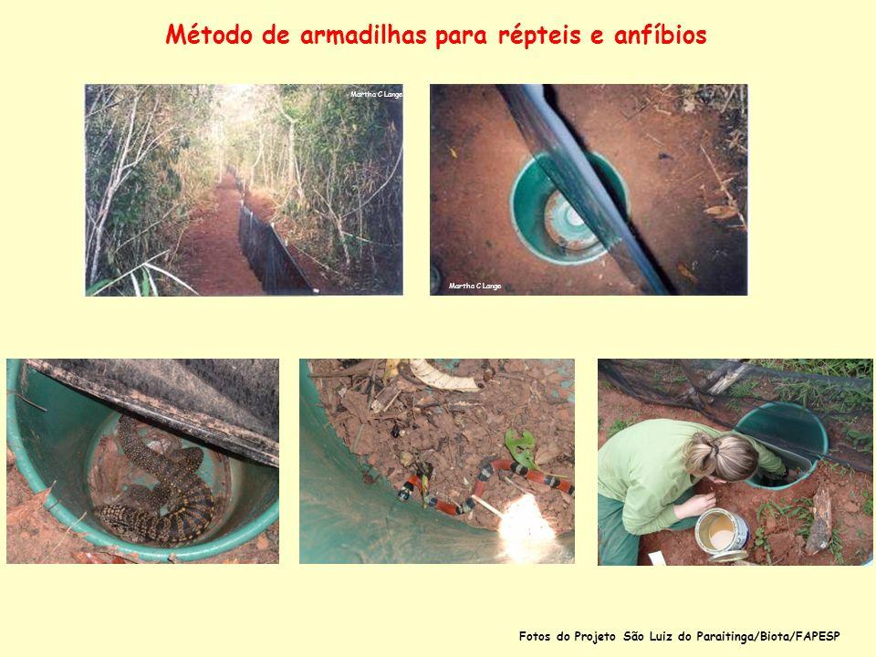 Método de armadilhas para répteis e anfíbios Martha C Lange Fotos do Projeto São Luiz do Paraitinga/Biota/FAPESP