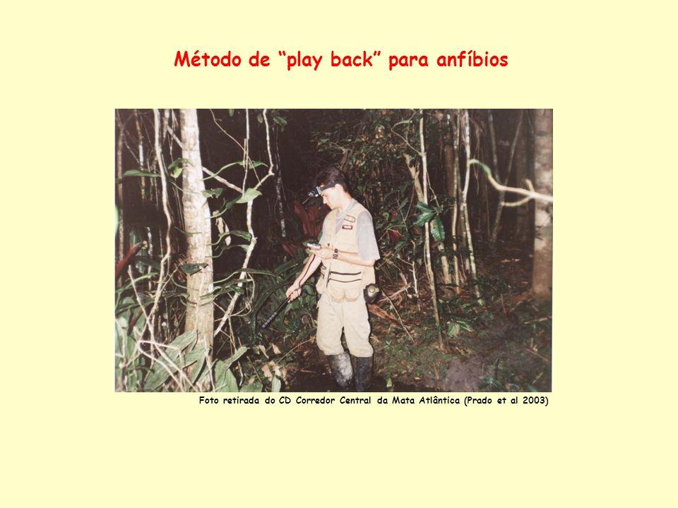 Método de play back para anfíbios Foto retirada do CD Corredor Central da Mata Atlântica (Prado et al 2003)
