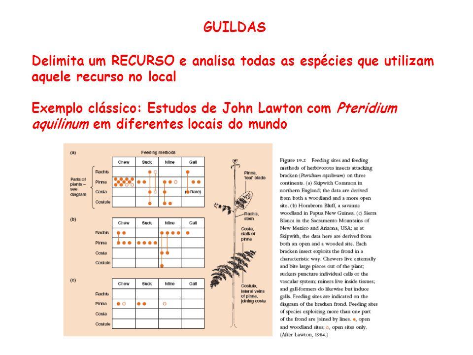 GUILDAS Delimita um RECURSO e analisa todas as espécies que utilizam aquele recurso no local Exemplo clássico: Estudos de John Lawton com Pteridium aq