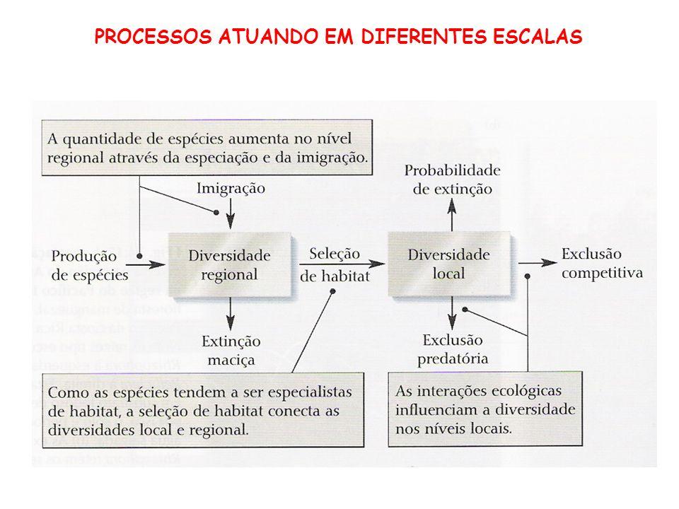 PROCESSOS ATUANDO EM DIFERENTES ESCALAS
