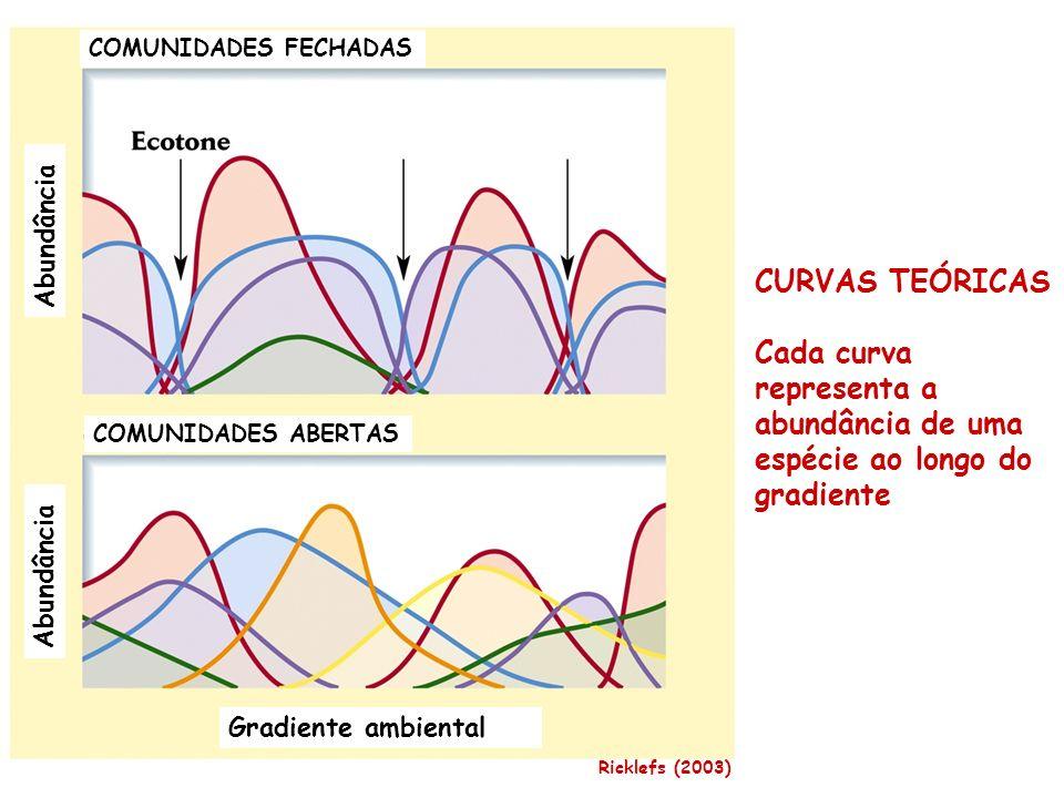 COMUNIDADES FECHADAS COMUNIDADES ABERTAS Gradiente ambiental Abundância CURVAS TEÓRICAS Cada curva representa a abundância de uma espécie ao longo do