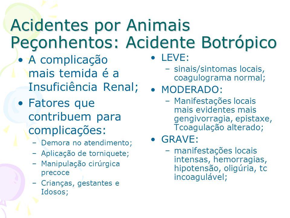 Acidentes por Animais Peçonhentos: Acidente Botrópico A complicação mais temida é a Insuficiência Renal; Fatores que contribuem para complicações: –De