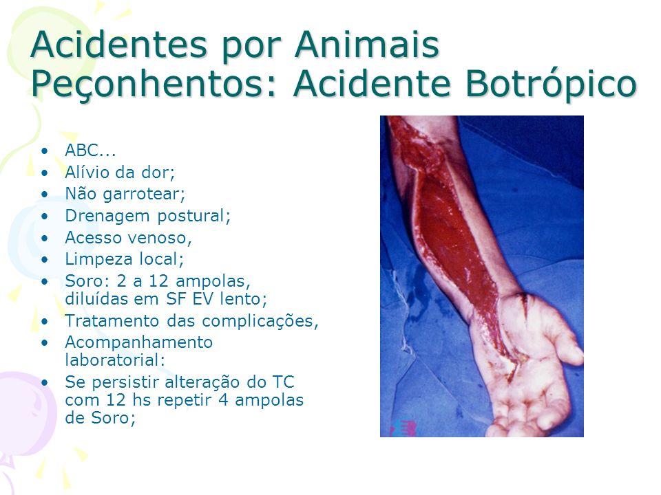 Acidentes por Animais Peçonhentos: Acidente Botrópico ABC... Alívio da dor; Não garrotear; Drenagem postural; Acesso venoso, Limpeza local; Soro: 2 a
