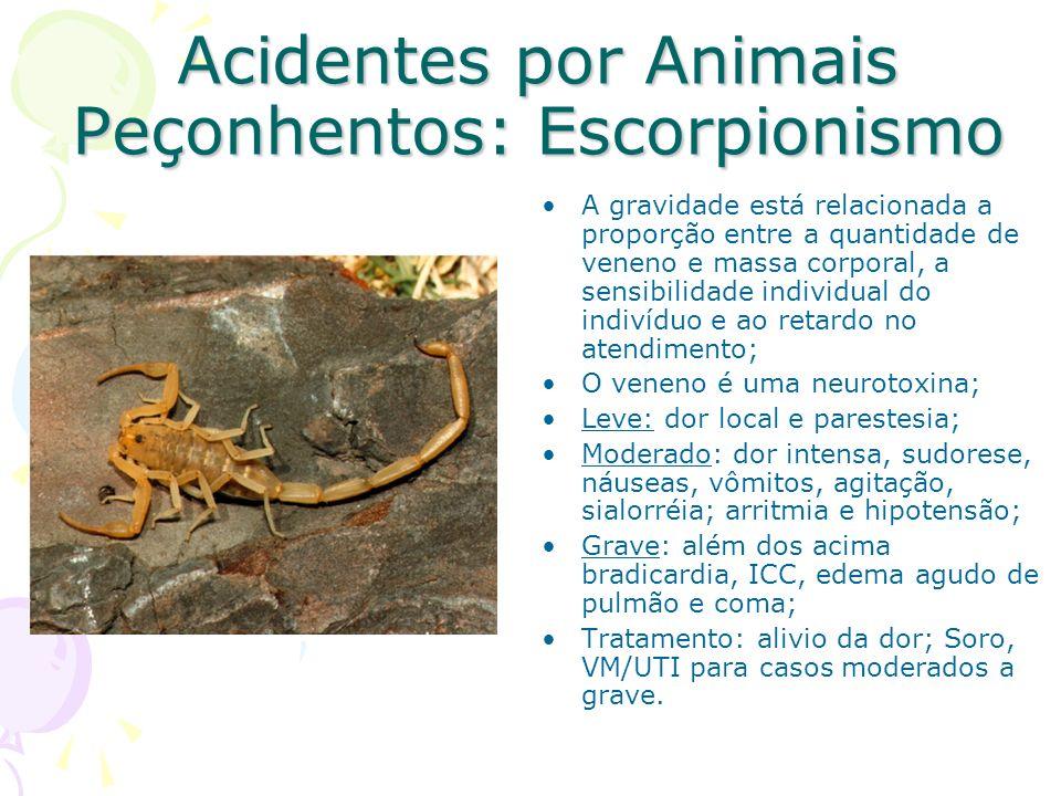 Acidentes por Animais Peçonhentos: Escorpionismo A gravidade está relacionada a proporção entre a quantidade de veneno e massa corporal, a sensibilida
