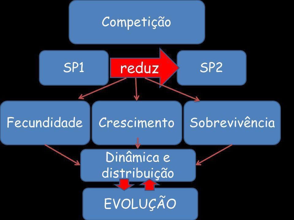 Competição FecundidadeCrescimentoSobrevivência SP1SP2 reduz Dinâmica e distribuição EVOLUÇÃO