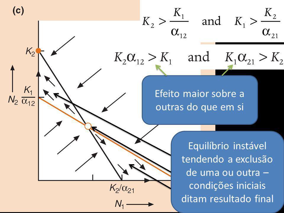 Efeito maior sobre a outras do que em si Equilíbrio instável tendendo a exclusão de uma ou outra – condições iniciais ditam resultado final